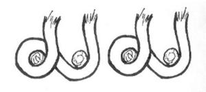 asymmetrical knots