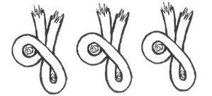 side view of symmetrical knots
